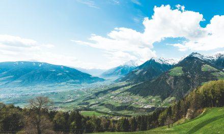 De prachtige Vlaamse natuur is het werk van Natuurpunt